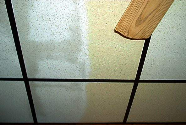 Ceiling Cleaning Supplier